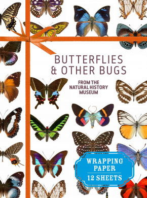 Butterflies and Other Bugs
